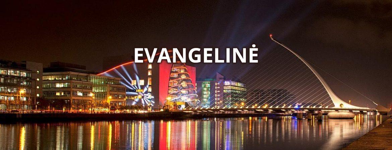 Dublinas-Baneris